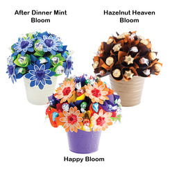 Medium Bloom Subscription x6