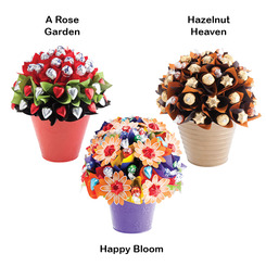 Large Bloom Subscription x6