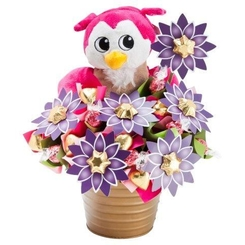Ollie the Owl Bloom