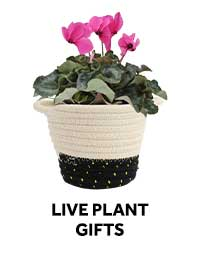 Live Plant Gifts