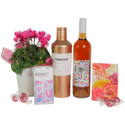 Cyclamen Gem Hamper