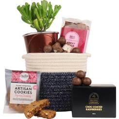 The Succulent & Chocolate Gourmet Hamper