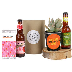 Valentine Beers and Succulent Gift