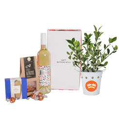 Uh-Oh Gardenia & White Wine Hamper