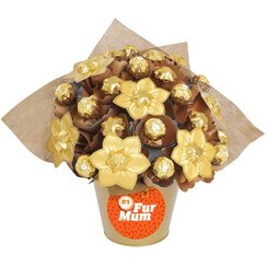 'Number One Fur Mum' Golden Medium Chocolate Bouquet
