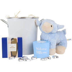 Little Boy Blue Hamper