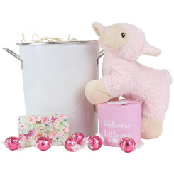 Little Pink Lady Hamper