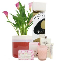 Christmas Calla Lily Pamper Kit