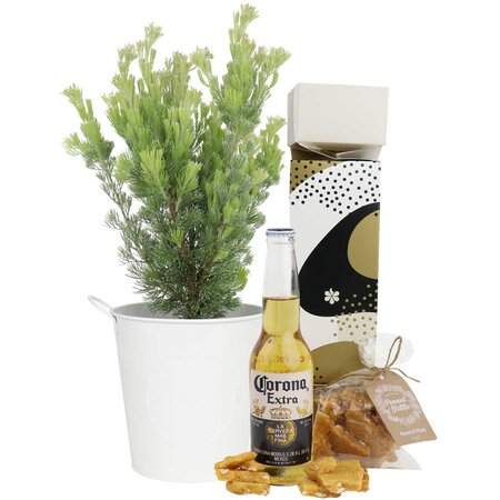 Woolybush with Beer